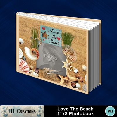 Love_the_beach_11x8_photobook-001a