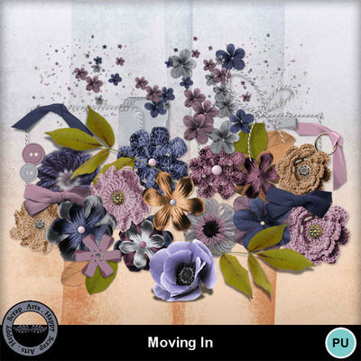 Movingin__6_