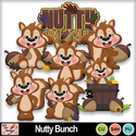 Nutty_bunch_preview_small