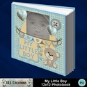 My_little_boy_12x12_photobook-001a_small