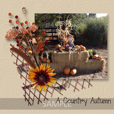 Scrapbookcrazy-creations-autumn-splendor-carol-02
