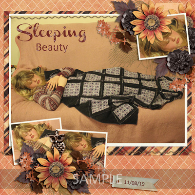 Scrapbookcrazy-creations-autumn-splendor-robyn-0100s