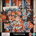 Tangerine_small