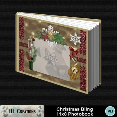 Christmas_bling_11x8_book-001a