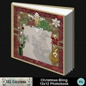 Christmas_bling_12x12_book-001a_small