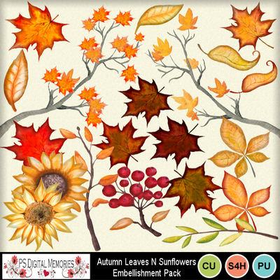Autumn_leaves_n_sunflowers