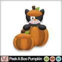 Peek_a_boo_pumpkin_preview_small