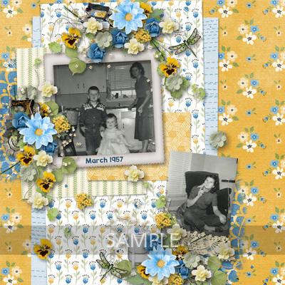 600-adbdesigns-housewife-life-dana-01
