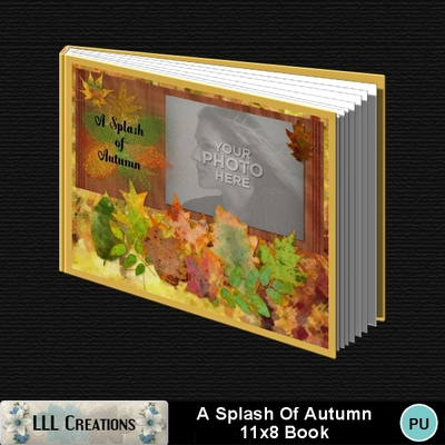 A_splash_of_autumn_11x8_book-001a
