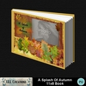 A_splash_of_autumn_11x8_book-001a_small