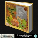 A_splash_of_autumn_12x12_book-001a_small