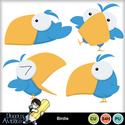 Americo_birdie_small