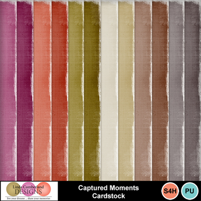 Captured_moments_cardstock-1