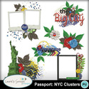 Mm_passportnycclusters_small
