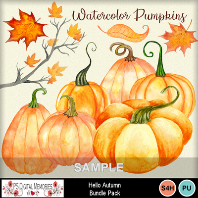 Autumn_pumpkins_2