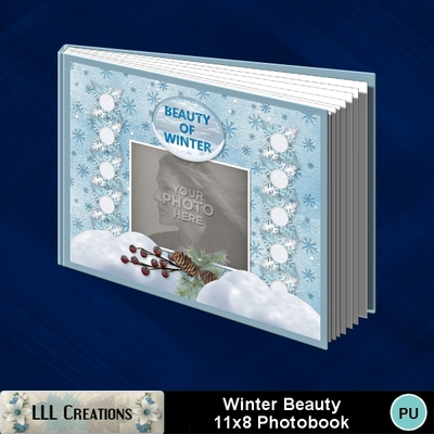 Winter_beauty11x8_photobook-001a
