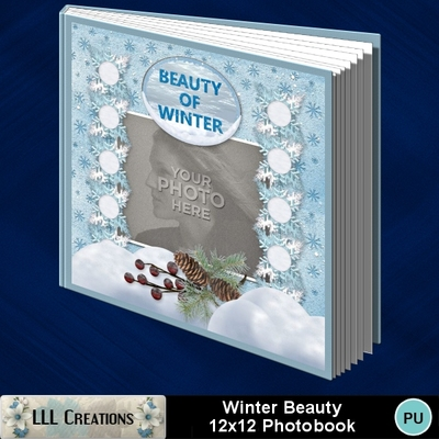 Winter_beauty12x12_photobook-001a