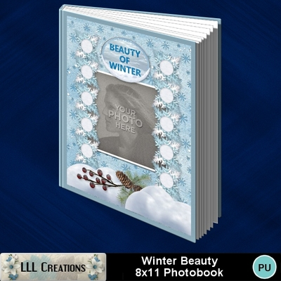 Winter_beauty_8x11_photobook-001a