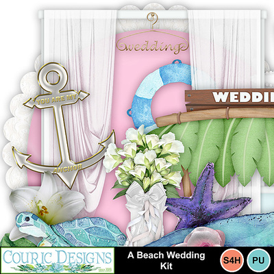 A-beach-wedding-kit-4