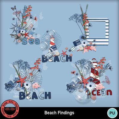 Beachfindings__5_