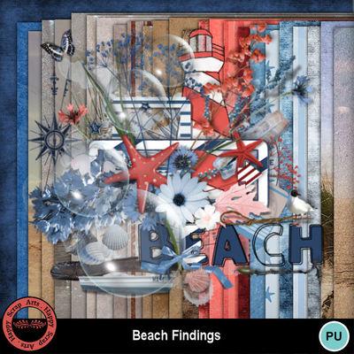 Beachfindings__2_