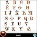 Goodies__9__small