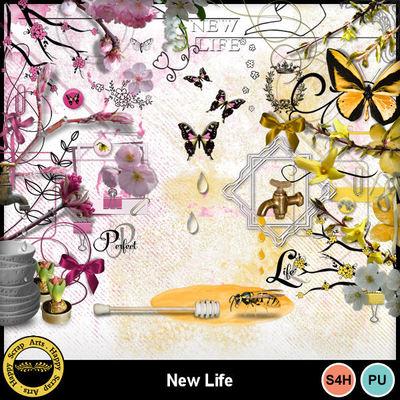 Newlife__2_