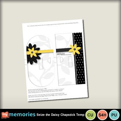 Seize_the_daisy_chapstick_temp-001