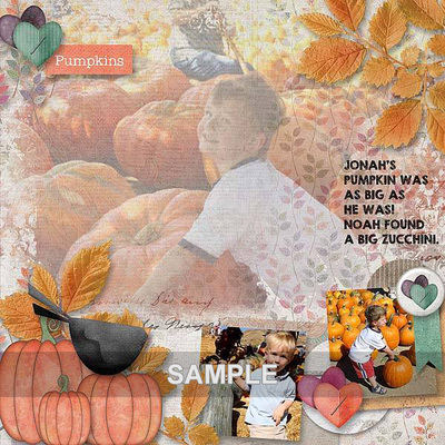 As_layout9