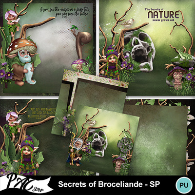 Patsscrap_secrets_of_broceliande_pv_sp