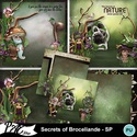 Patsscrap_secrets_of_broceliande_pv_sp_small