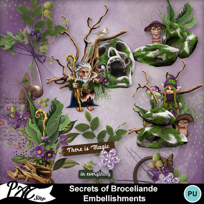 Patsscrap_secrets_of_broceliande_pv_embellishments