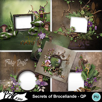 Patsscrap_secrets_of_broceliande_pv_qp