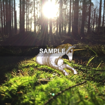 Unicornpapersample-004