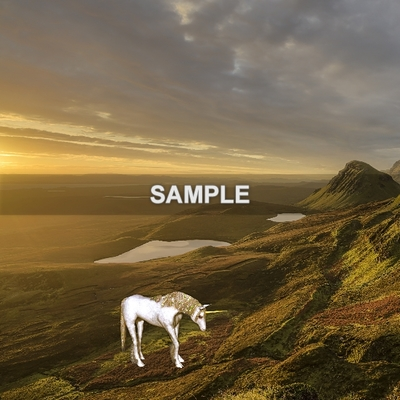 Unicornpapersample-006