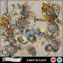Pv_learntolove_embe_florju_small