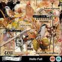 Pv_hellofall_florju_small