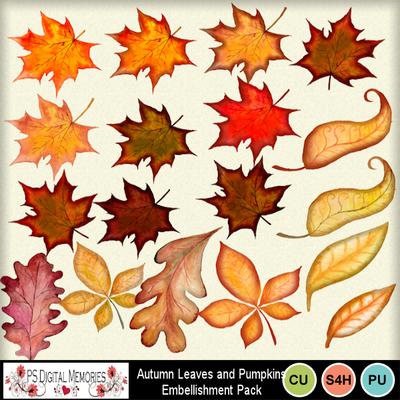 Autumn_leaves__