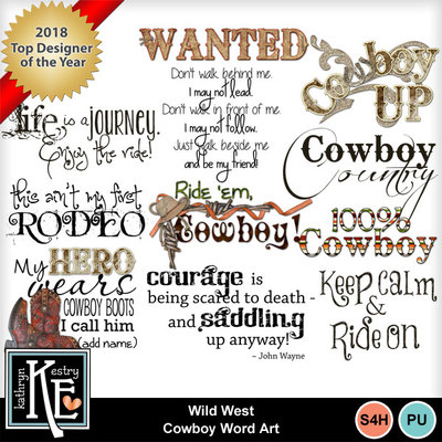 Wildwestcowboywa1