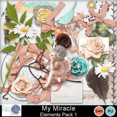 Pbs_my_miracle_ele1
