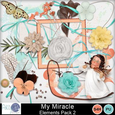 Pbs_my_miracle_ele2