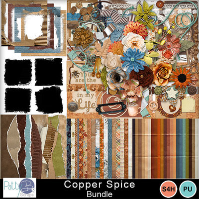 Pbs_copper_spice_bundle
