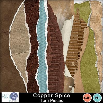 Pbs_copper_spice_torn