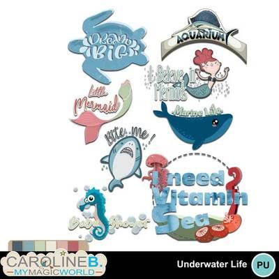 Underwaterlifewa_1