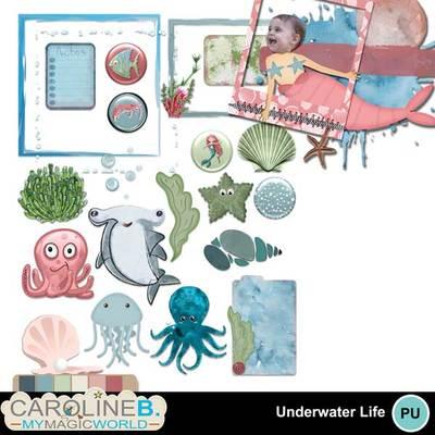 Underwaterlifeel_1