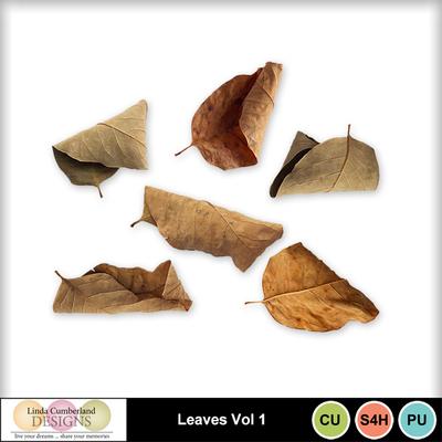 Leaves_vol1-1