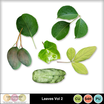 Leaves_vol2-1