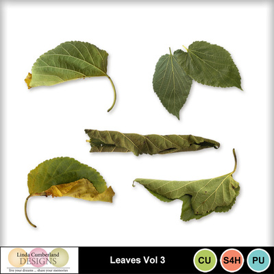 Leaves_vol3-1