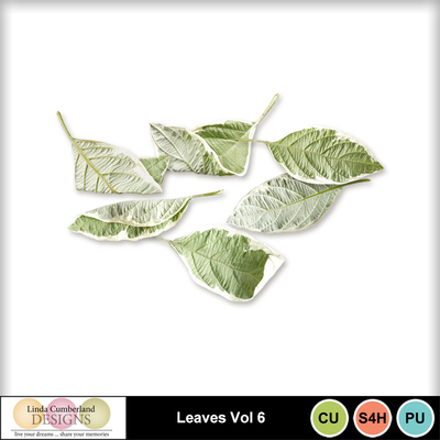 Leaves_vol6-1
