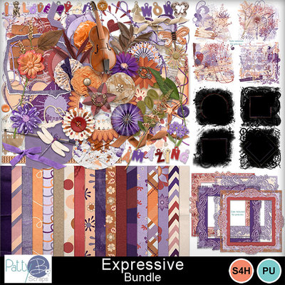 Pbs_expressive_bundle